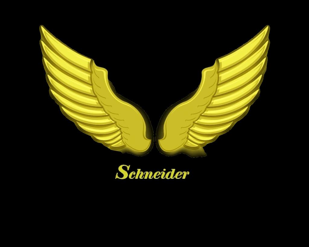 لوگوی اشنایدر